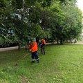 В Люберцах рабочие выполнили покос травы на площади почти 2 тысячи кв. метров