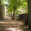 Дворы ремонтируют в Люберцах