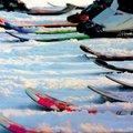 Турнир по лыжным гонкам отменили в Люберцах 6 марта