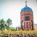 В Люберцах заканчивают работы по цветочному оформлению города