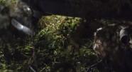 Фотография из фильма Тихое место
