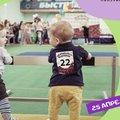 «Чемпионат ползунков» пройдет в Люберцах в воскресенье