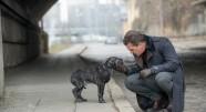 Фотография из фильма Цепной пёс