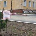 Студенты техникума Люберец высадили кедры в рамках акции