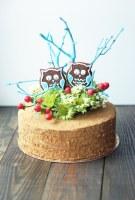 Натуральные, вкусные и красивые торты на заказ