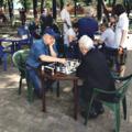Шахматный сезон открывается в люберецких парках