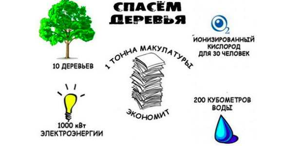 Сбор макулатуры акция московская область прием макулатуры город волжск