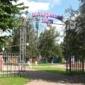 Ружицкий рассказал Воробьеву о сухостое в Наташинском парке