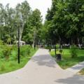Обновление Томилинского лесопарка обойдется в несколько миллионов рублей