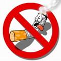 В «Наташинском парке» атаковали сигареты-гиганты