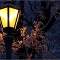 Свет придет в Котельники благодаря просьбам жителей