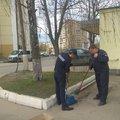Спасатели Люберец посадили деревья на субботнике