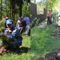 Акция «Лес Победы» в Люберецком районе: высажено 14 000 деревьев