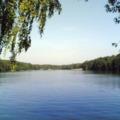 Этим летом люберчане смогут искупаться только в двух водоемах