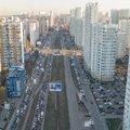 На Комсомольском проспекте Люберец проведут компенсационную высадку деревьев