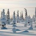 В Люберецкий район идут похолодание и снегопады