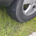 Люберцы - первые в области по числу машин на газонах