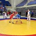 Около 200 спортсменов участвуют в первенстве по самбо в Люберцах