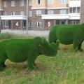 Слоны и носороги установлены во дворе на ул. Дружбы
